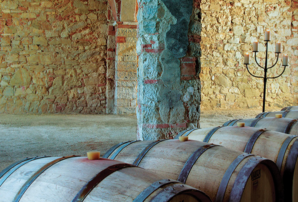 Wine barrels sit in a dark cellar aging their contents well.
